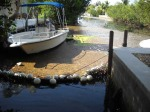 Eden-Pines-Canal