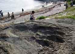Godzilla-footprint