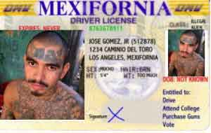 Mexifornia-License16