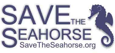 Save-the-Seahorse-title-v3