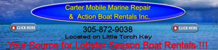 lower keys boat rental7.11.14