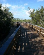 bike-bridge-summerland00