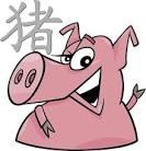 china-pig6