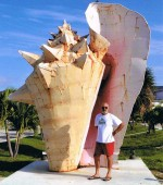 conch shell00