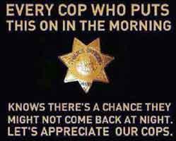 cops30
