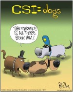 csi-dogs2