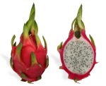 dragon-fruit11