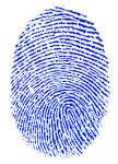 fingerprint24