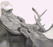 malcom-deer00