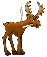 moose-smoking