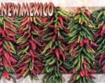 new-mexico22