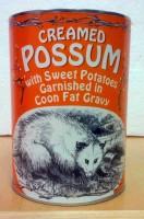 possum21