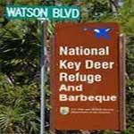 refuge-bbq-sign150x150