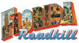 roadkillmain