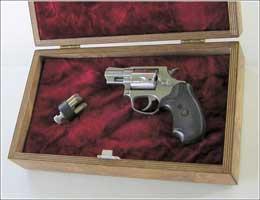 selfdefense-gun