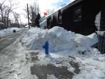 snow-ri