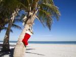 sock-tropical-Christmas-1