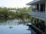 sugarloaf-lodge-pond