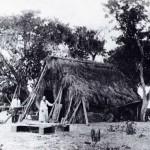 thatch hut150x150