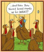 turkey20