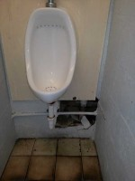 urinal-looe-tiki00