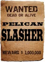wanted-poster-pelican