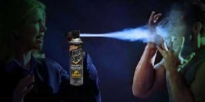 wasp-spray6